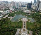 Hà Nội với chiến lược phủ xanh đô thị
