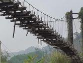 Cây cầu... mồ côi