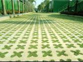 Giải pháp phủ xanh mặt đường, sân