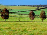 Nhà giàu Việt mua trang trại Australia