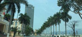 Đà Nẵng: Nâng cấp một số tuyến đường phục vụ APEC